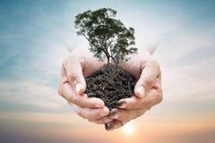 Die menschlichen Hände, die Boden halten, taucht vom Himmel im verwischten Hintergrund auf Umwelttagesökologiekonzept Lizenzfreies Stockfoto