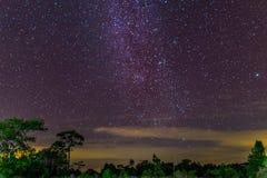 Die Milchstraße und einige Bäume Lizenzfreie Stockfotografie