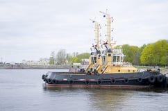 Die Militärschiffe in Kronstadt Russland Stockbild