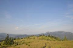 Die Mitte der Natur Lizenzfreie Stockbilder
