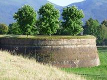 Die mittelalterliche Steinwand um die Hügelstadt von Lucca, Italien lizenzfreies stockbild