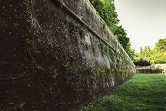 Die mittelalterliche Wand in Lucca stockfoto