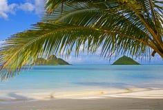 Die mokulua Inseln weg vom lanikai setzen, Oahu auf den Strand Stockfotografie