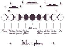 Die Mondphasen Der ganze Zyklus vom Neumond nach voll Vektor Stockfotografie
