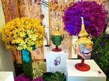 Die Musterbangkok-Orchideen 2014 Lizenzfreie Stockfotografie