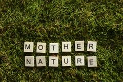 Die Mutter Natur, die mit hölzernen Buchstaben geschrieben wurde, berechnete Form auf dem grünen Gras stockbild