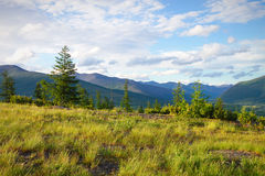 Die Naturschönheit von Chukotka Lizenzfreies Stockbild