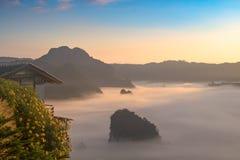 Die Nebel-und Sonnenaufgang-Zeit mit Maxican-Sonnenblume, Landschaft bei Phu Langka, Payao-Provinz, Thailand Stockfoto