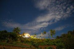 Die Nebel-und Sonnenaufgang-Zeit mit Maxican-Sonnenblume, Landschaft bei Phu Langka, Payao-Provinz, Thailand lizenzfreie stockfotos