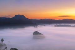 Die Nebel-und Sonnenaufgang-Zeit mit Maxican-Sonnenblume, Landschaft bei Phu Langka, Payao-Provinz, Thailand Lizenzfreies Stockfoto