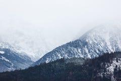 Die nebelhaften Alpen Lizenzfreies Stockfoto