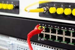Die Netzkabel, zum von Lan-Hafen anzuschlie?en stockfotografie