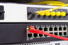 Die Netzkabel, zum von Lan-Hafen anzuschlie?en lizenzfreie stockfotografie