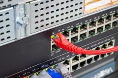 Die Netzkabel, zum von Lan-Hafen anzuschlie?en lizenzfreie stockbilder