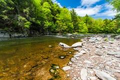 Die Neversink-Fluss-Schlucht Stockbilder