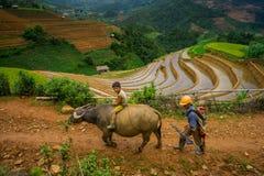 Die nicht identifizierten Landwirte erledigen Landwirtschaftsarbeit auf ihren Feldern am 13. Juni 2015 in MU Cang Chai, Yen Bai,  Lizenzfreies Stockbild