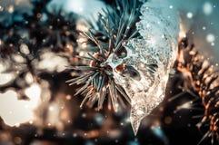 Die Niederlassung der Fichte mit einem Eis und einem fallenden Schnee Stockfotografie