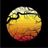 Die Niederlassungen des toten Baums vektor abbildung