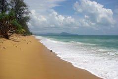 Die Niederlassungen von Kokosnusspalmen gegen den klaren blauen Himmel Lizenzfreie Stockfotos