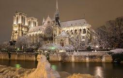 Die Notre Dame-Kathedrale im Winter und im Schneemann im Vordergrund, Paris, Frankreich Stockfotografie