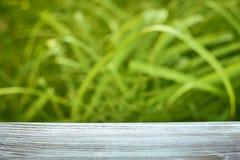 Die Oberfläche der blauen Farbe des Holztischs auf dem Hintergrund des Grüns Stockfotos