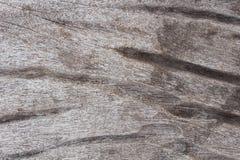 Die Oberfläche des hölzernen Sprunges weil Feuchtigkeit Stockfotos