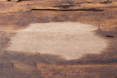 Die Oberfläche des Holzes beide nass-trocken Stockfoto