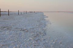 Die Oberfläche des Sees mit sehr salzigem Wasser Lizenzfreie Stockbilder