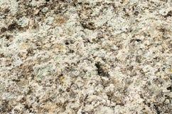 Die Oberfläche von Felsen in den Bergen Stockfotos