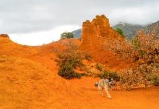 Die ockerhaltigen Steinbrüche von Rustrel Frankreich Stockfotografie