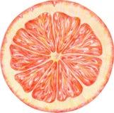 Die Orange wurde durch Bleistifte hergestellt Stockfotografie