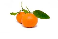 Die Orangen Lizenzfreies Stockfoto