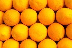 Die Orangen werden schön und gleichmäßig in den Linien unter der Sonne ausgebreitet Der schöne Hintergrund Stockfotografie