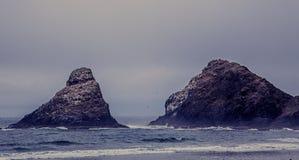 Die Oregon-Küste Stockfoto