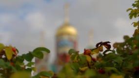 Die orthodoxe Kirche in der Kaluga-Region von Russland stock video footage