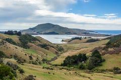 Die Otago-Halbinsel Neuseeland Lizenzfreies Stockfoto