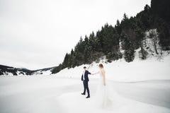 Die Paare, die Braut und Br?utigamh?ndchenhalten in den Bergen lizenzfreie stockfotografie