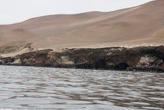 Die Paracas-Kandelaber - Peru- - Anden-Kultur Stockbilder