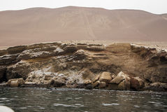 Die Paracas-Kandelaber - Peru- - Anden-Kultur Lizenzfreie Stockfotos