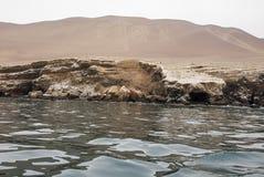 Die Paracas-Kandelaber - Peru- - Anden-Kultur Lizenzfreie Stockfotografie