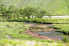 Die paradisal Landschaft von Glen Etive mit der Flussmündung Etive, Schottland stockbilder