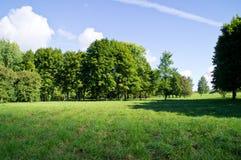 Die Parklandschaft in Weißrussland Lizenzfreies Stockfoto
