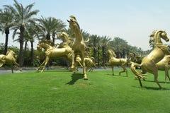 Die Pferde Stockbild