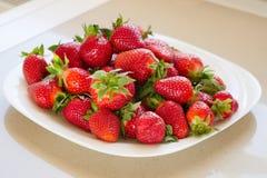 Die Platte mit frischer Erdbeere lizenzfreies stockbild