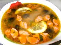 Die Platte mit geschmackvoller Suppe Stockfotografie