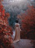 Die Prinzessin in einem gelben Weinlesekleid in der Renaissance geht entlang die malerischen Herbsthügel an der Dämmerung foto stockfotos