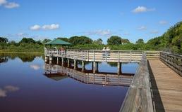 Die Promenade in Wakodahatchee-Sumpfgebieten lizenzfreie stockfotos
