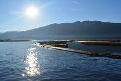 Die Protokollierung barge herein den pazifischen Nordwesten Stockfotografie