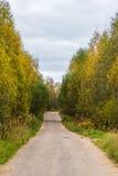 Die Provinzialstraße zwischen den Dörfern von Tver-Region Stockfotos