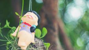 Die Puppe auf einem Baum Stockfotografie